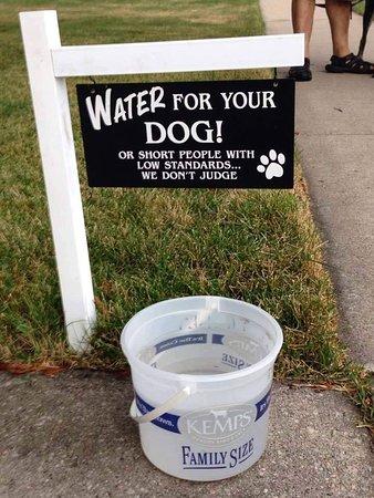 Grewelthorpe, UK: Dog treats available