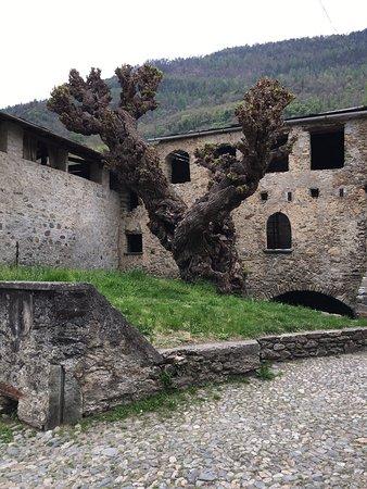 Ponte in Valtellina Foto