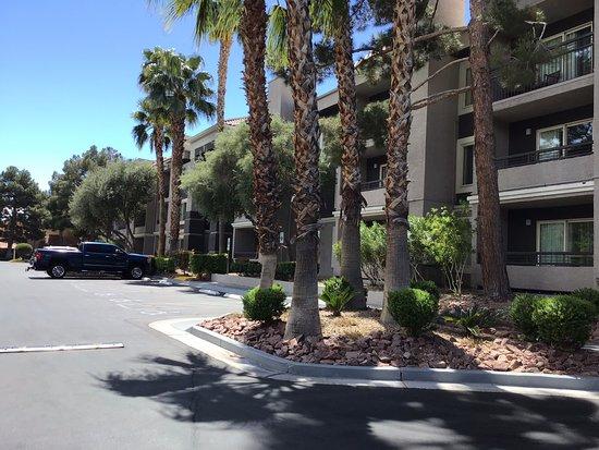 Desert Rose Resort: extérieur