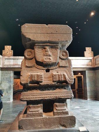 Национальный антропологический музей