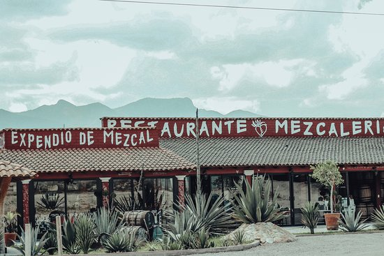 Palenque Mal De Amor