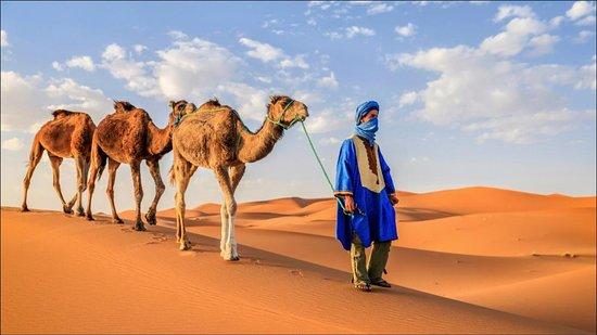 Morocco Desert Trips 4x4