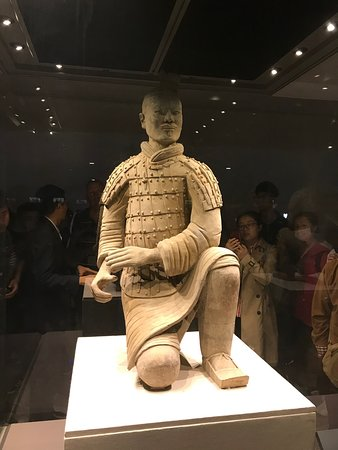 ‪Mini Group: Half-Day Xi'an Terracotta Warriors Discovery Tour‬ لوحة