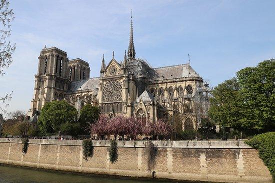Cathédrale Notre-Dame de Paris: Cathedrale Notre-Dame de Paris