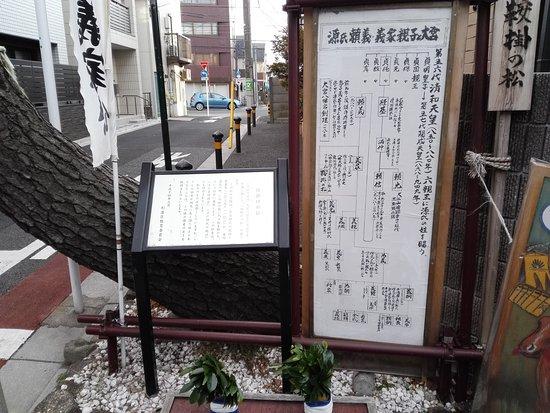 Kurakake no Matsu