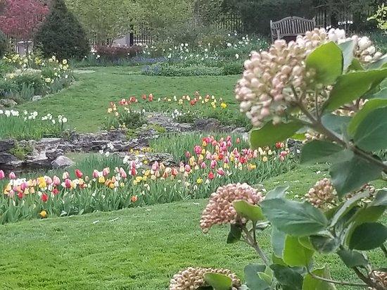 Smith Gardens