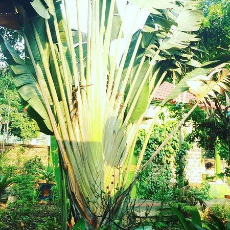 Luxury Travel: Dong Du Eco Farmstay