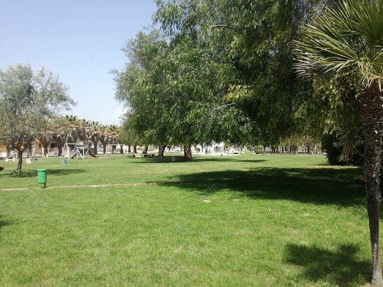 Parco Urbano Falcone - Borsellino
