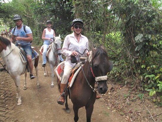 Luquillo Beach Horse Ride from Carabalí Rainforest Adventure Park: On our way to the jungle area