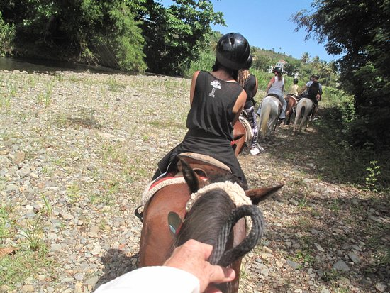 Luquillo Beach Horse Ride from Carabalí Rainforest Adventure Park: On our way to the beach!