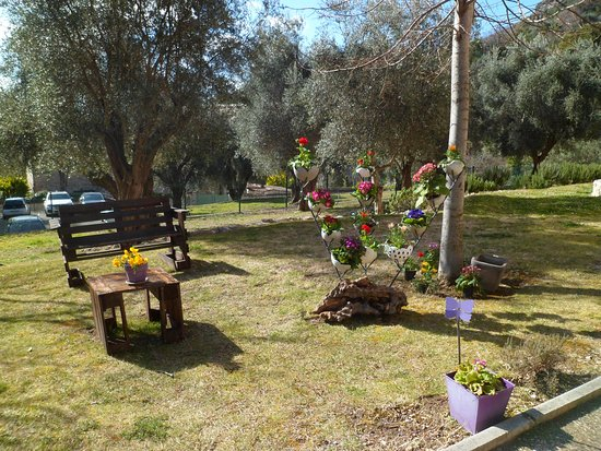 """fleurissement des jardins pour les manifestations """"autour de la  violette"""""""