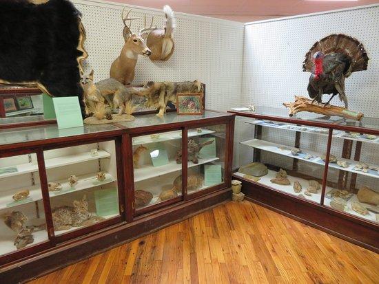 Mills County Museum: Mills County Museum, Goldthwaite, TX