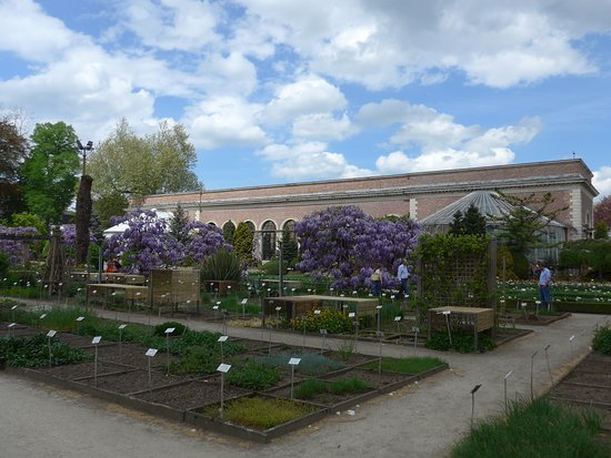 Leuven, Botanical Garden Kruidtuin