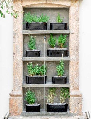 Happy herbs wall