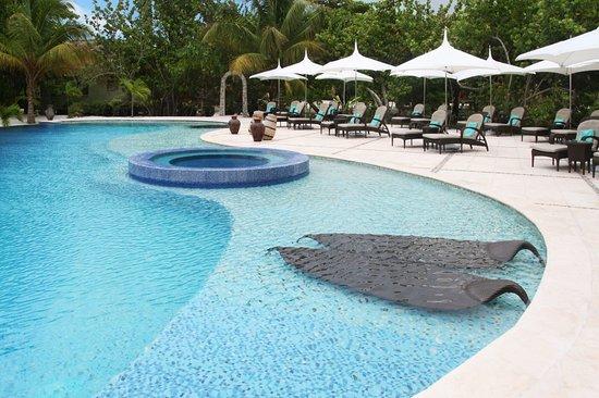 Pool - Picture of Matachica Resort, Ambergris Caye - Tripadvisor
