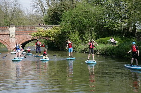Leam Boat Centre: Family beginners SUP session