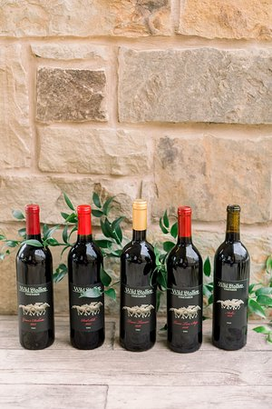 Our current red wines available.