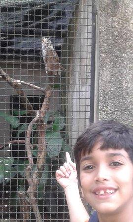 Parque Estadual de Dois Irmaos - Zoologico de Recife: Corija de Harry Potter
