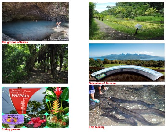 Tahiti Eden Tours: Full day tour 8 hours: the grottos, the look out of taravao, the eels feeding…..