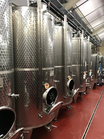 Woodchester, UK: Vats at the vineyards