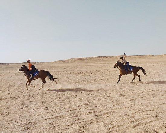 Ride Egypt: Gallops in Hurghada