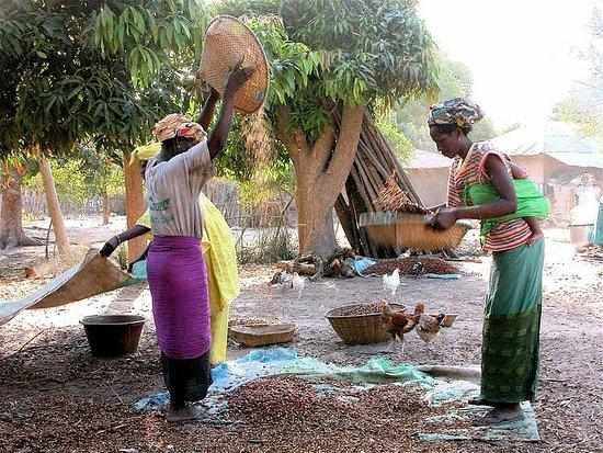 Cap Skiring, Сенегал: LES FEMMES DE CASA