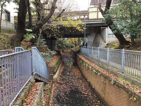 Tamagawa Josui Ryokudo