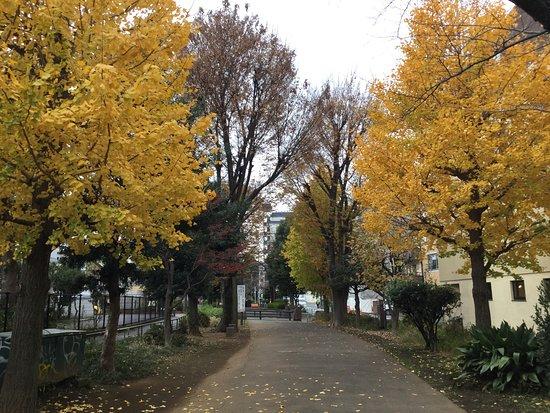 Tamagawa Jousui Kyusuiro Ryokudou