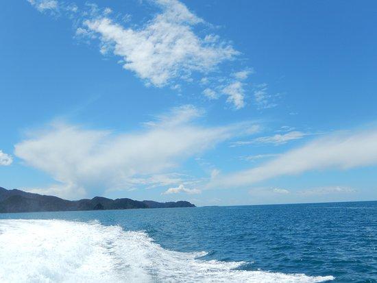 Abel Tasman Vista Cruise: Cruising from Anchorage Bay to Kaiteriteri