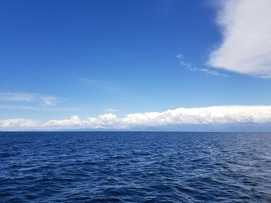 Abel Tasman Vista Cruise: Cruising open waters off the National Park