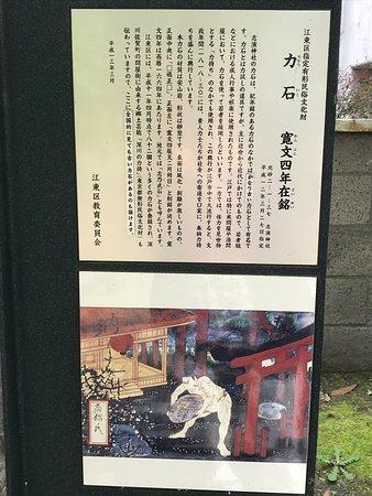 Chikaraishi Kambun Yonen Zaimei