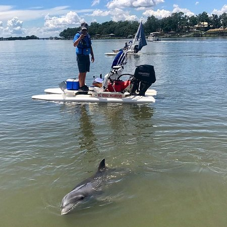 Bluewater Adventure: Hilton Head dolphins