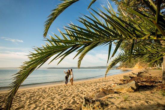 Entrance - Picture of BIG4 Ingenia Holidays Eden Beachfront - Tripadvisor