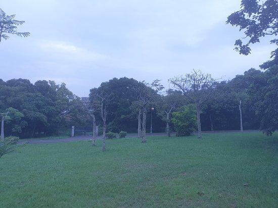 台中都會公園