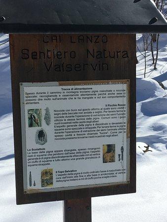 Info su fauna e flora del luogo