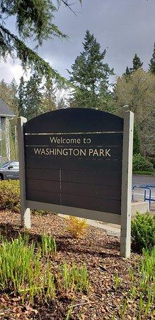תמונה מWashington Park