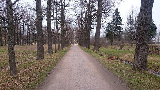 שבילים מחוץ לפארק.