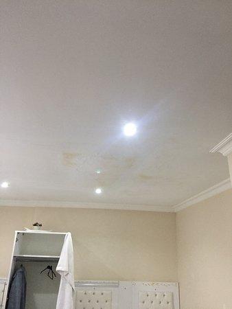 Последний этаж, по пятну на потолке видно, что вода может капать на постель, собственно на вас...