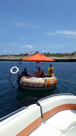 Octopus Aruba - Come and sail with us! Relax in the sun or shade and sail along the beautiful coastline of Aruba. Whether you want to sail privately, join us on one of our fantastic trips or want to sail with our Aqua Donut Boat, you've come to the right place!