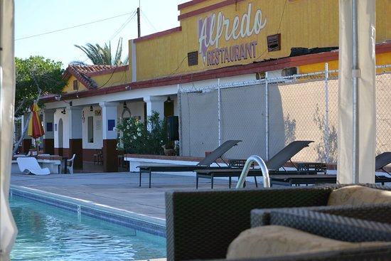 Alfredo's Baja Grill Restaurant at Las Palmas Hotel: Come spend the day and have lunch or dinner, lay by the pool, or do a YOGA class