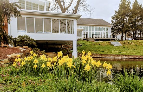 Kintnersville, Pensilvania: Exquisite Culinary Offerings & Picturesque Views