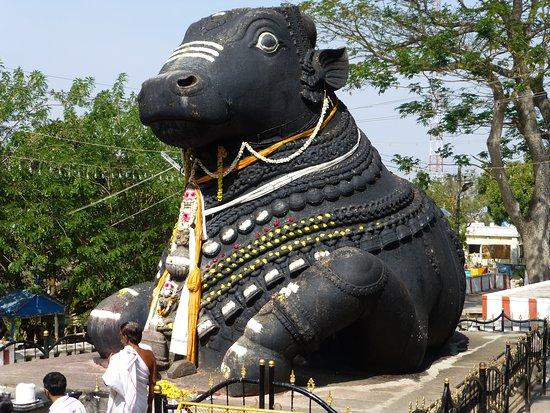ميسور, الهند: Cartoline da Mysore, India