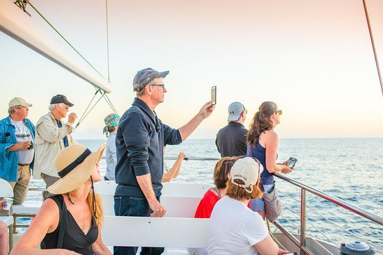 """A sunset cocktail cruise is a must for every Hawaiian Vacation. This beautiful 60ft Catamaran """"Lucky Lady"""" is the perfect vessel. Plenty of room to walk around and an upper deck to get a better birds-eye view of sea life! Designed for the Napali Coast, """"Lucky Lady"""" is our favorite boat for exploring."""