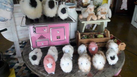 Campo Alegre, SC: A loja mais fofa da capital catarinense da ovelha