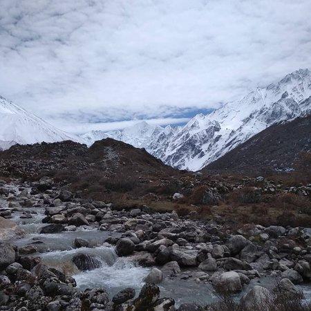 On the way to Kyanjin gompa Langtang, Nepal 4000m ish