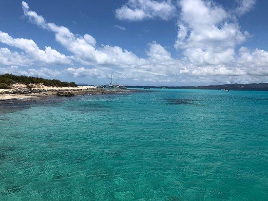 Traveler Catamaran: Photos April 26 2019
