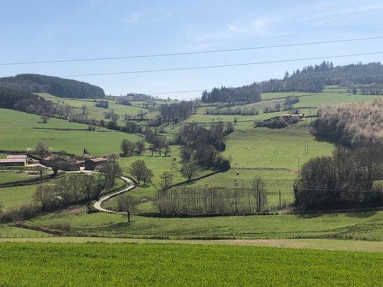 Chamery, Francja: Campagna in Champagne
