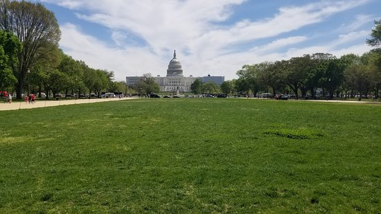 U.S. Capitol Building & Mall Green Space