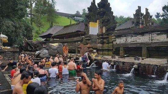 Heartland Bali Tours