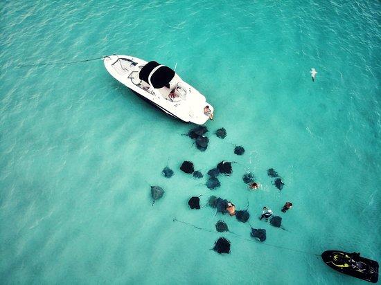 Island Breeze Charters Cayman